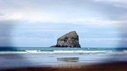 Teacup Rock, on the Oregon Coast