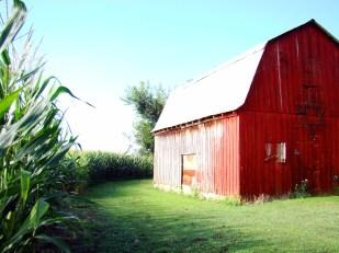 my sister's barn - I love it!