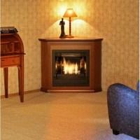 Bio fireplaces  opinions | LOVTER
