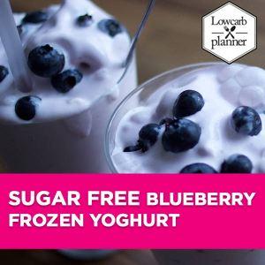 lcp-blogpost-frozenyoghurt