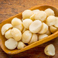 Macadâmia-alto-fat-nuts