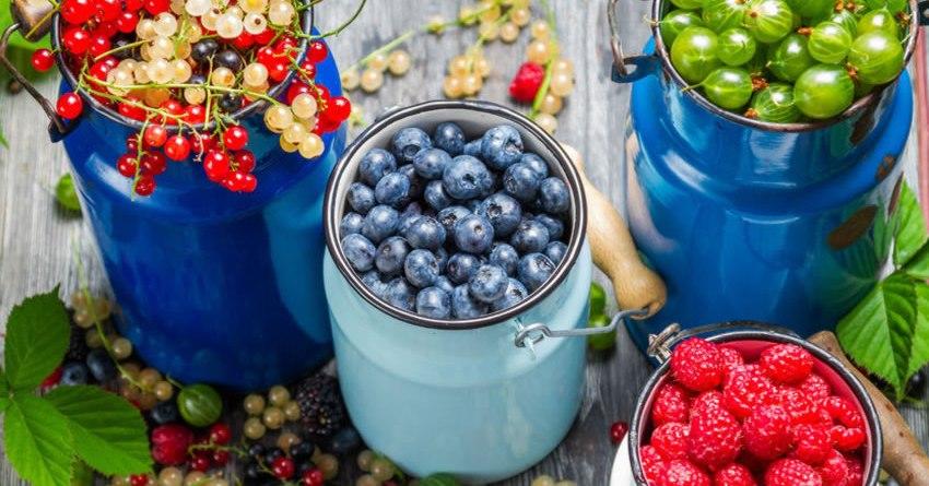 quais as melhores frutas para dieta low carb
