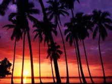 caribbean-beach-sunset