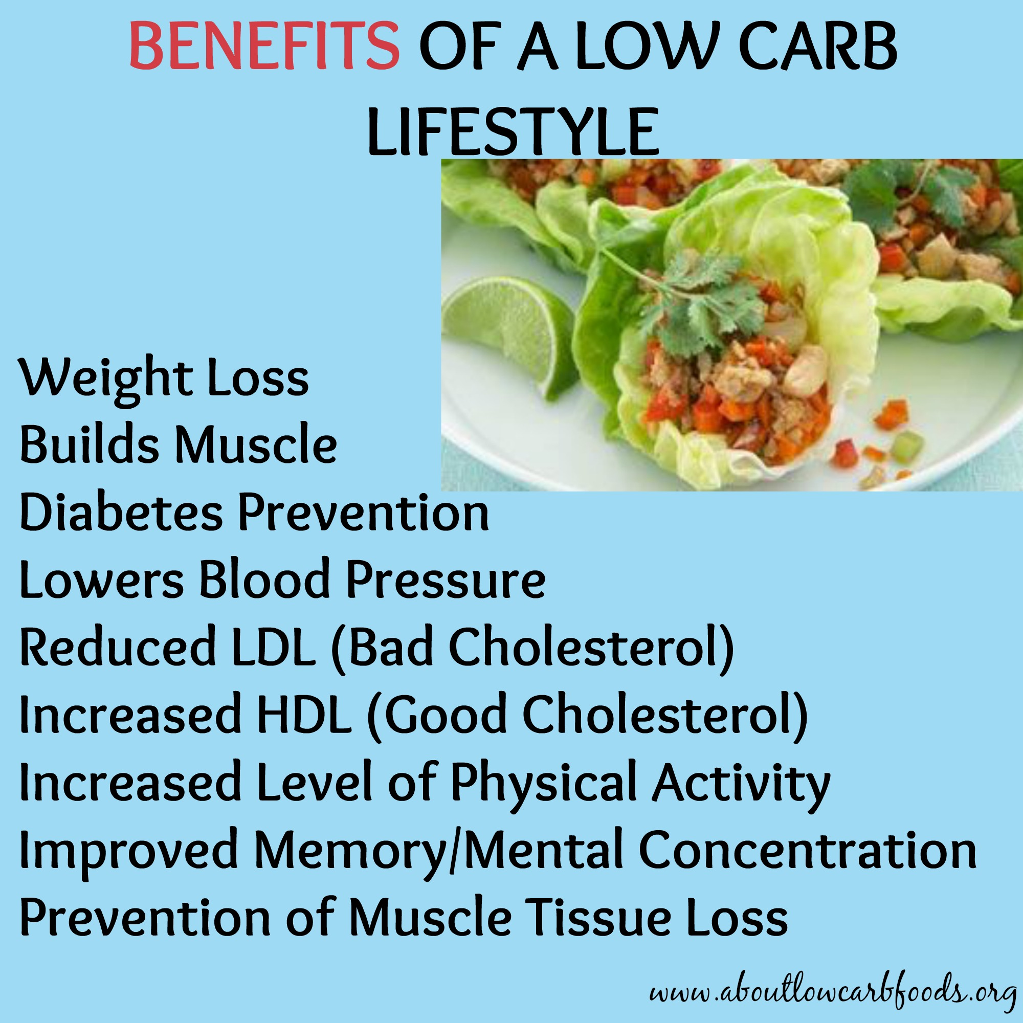 what is the most popular low carb diet