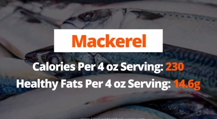 Mackerel - calories, fats, health benefits low carb food