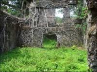 Bunce-Island-Castle-ruins