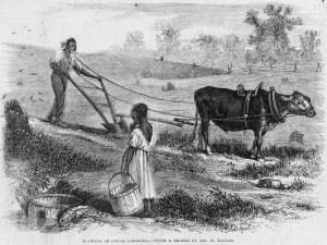 plowing in sc