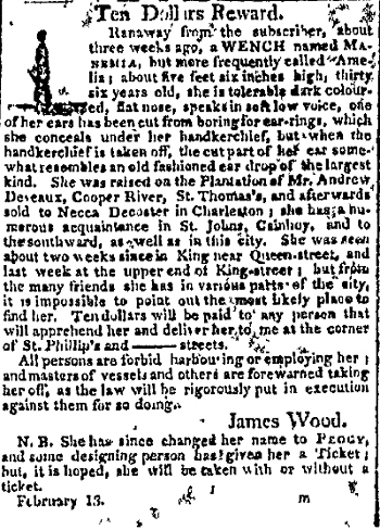 runaway slave ad manemia