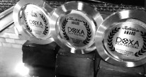 Film festival trophy
