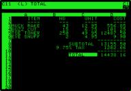 VisiCalc on Apple II