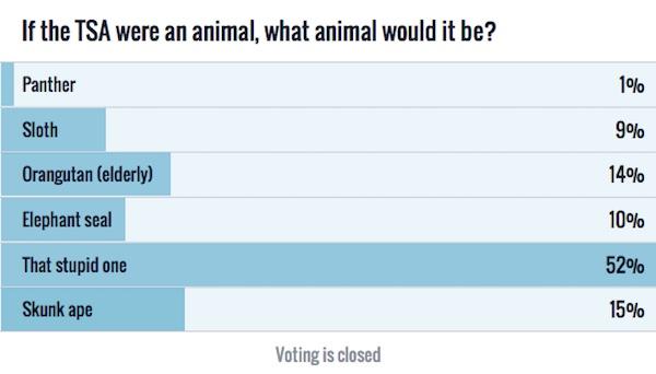 TSA Animal Poll