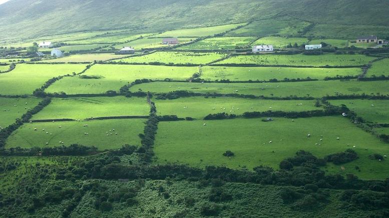 irish farmland