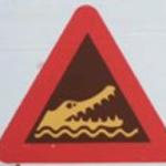 croc sign