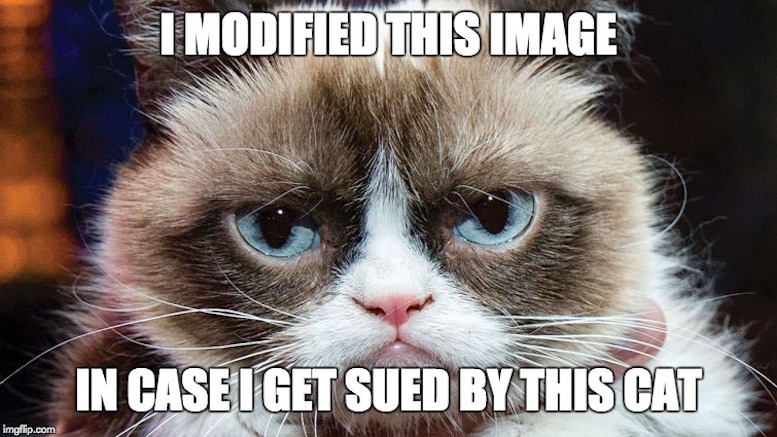 23f5d8?resize=777%2C437&ssl=1 grumpy cat wins $700,000 in copyright suit lowering the bar