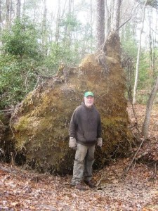 Sapia - Timmy Mechkowski in front of uprooted tree, Dec 2015