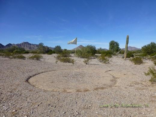 Golfing in the desert? Not us!