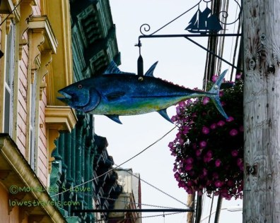 Must be Tuna fish