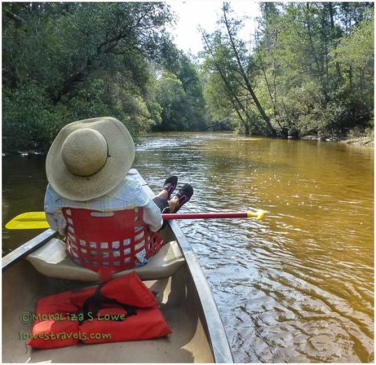 Blackwater River Canoeing