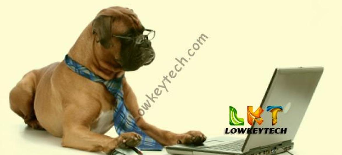 How Exactly Do Bloggers Make Money Online From Their Blogs? – Uche Leaks!