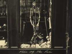 1926 photograph of skeleton in a shop window in Paris