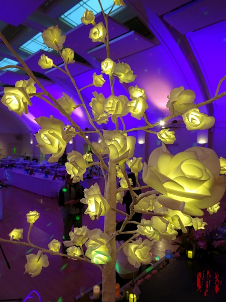Photo of a white articficial rose bush with led lights if the flowers.