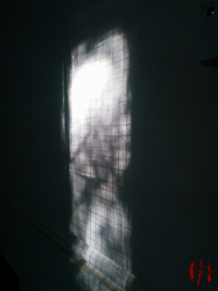 The crossed pattern of wire reinforced safety glass seen as a shadow on a wall.