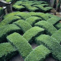 Replacement Living Room Chair Cushions Furniture Arrangement Around A Tv Knot Garden - Easy Home Decorating Ideas