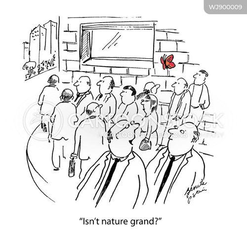 Natural World Cartoons