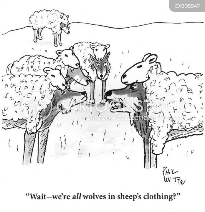 Wolf In Sheep S Clothing Cartoons And Comics Funny Pictures From Cartoonstock