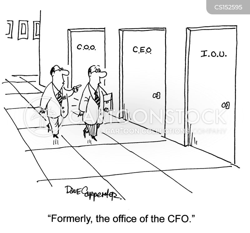 job description cfo small business.cfo job description