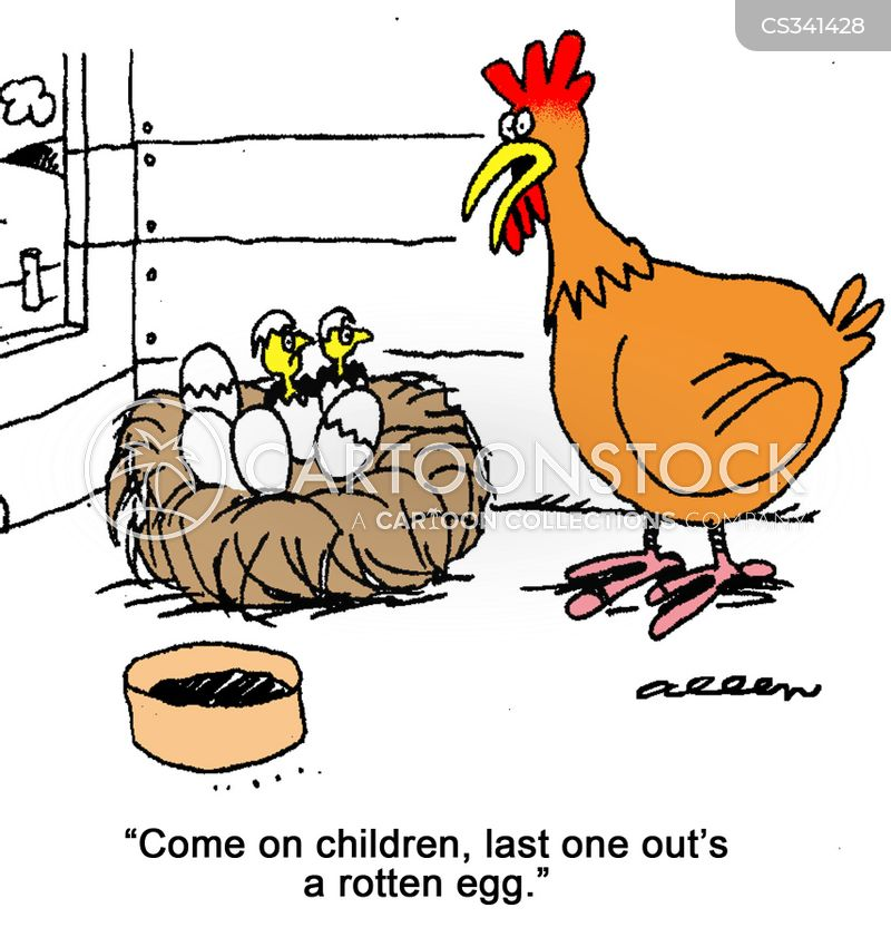 Egg Hatching Cartoons And Comics Funny Pictures From