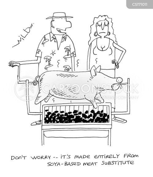 Cartoons und Karikaturen mit Spanferkel