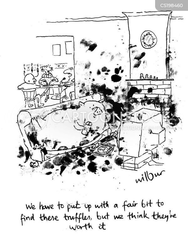 Messy House Cartoons and Comics funny pictures from