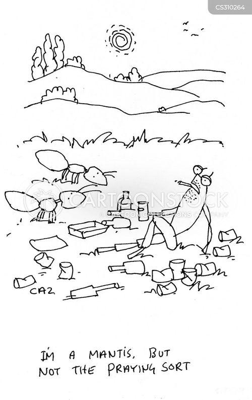 praying mantis's cartoons and comics