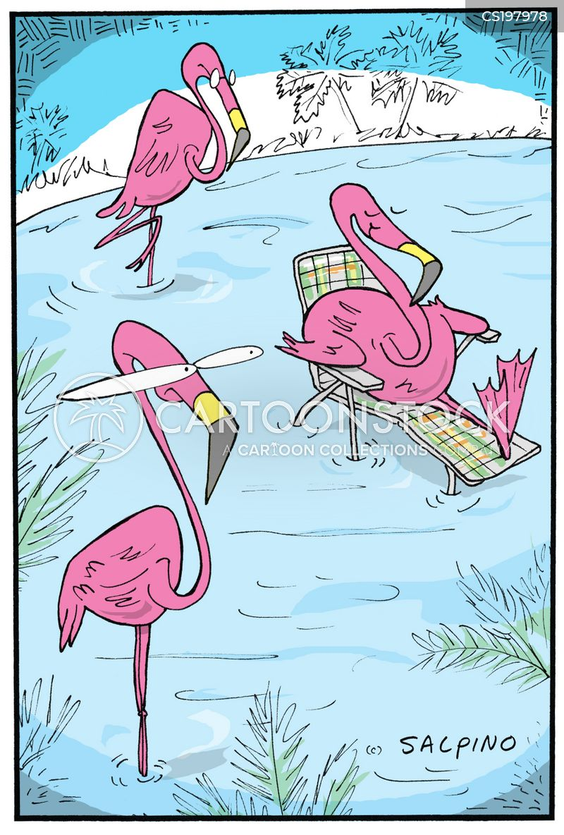 Pink Flamingo Cartoons and Comics  funny pictures from
