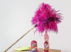 cleaning materials feather duster cleaner