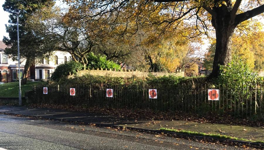 poppies outside Golborne Cenotaph, November 2020