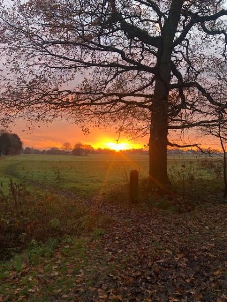 Sophie Elizabeth's photo of sunrise over Keepers in Golborne