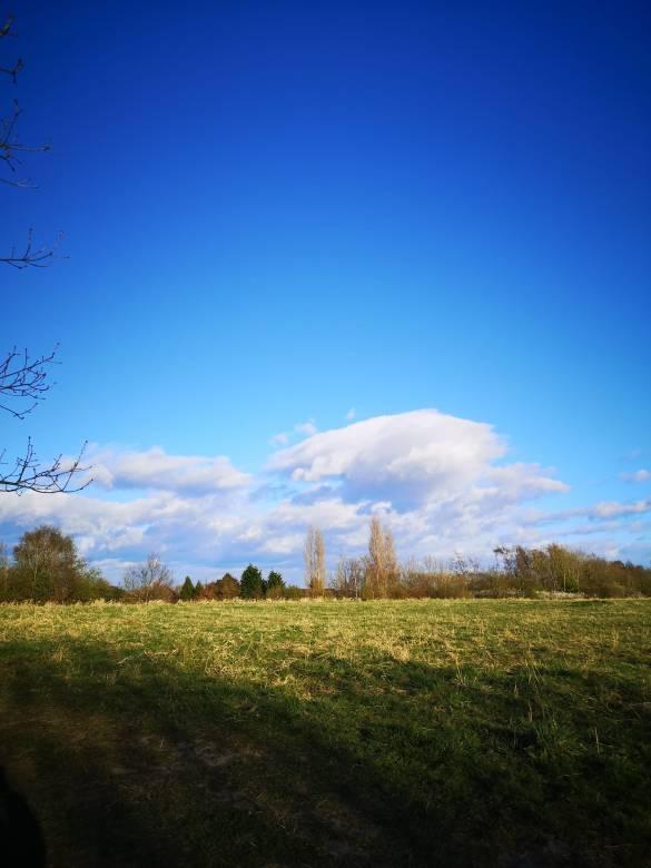 Blue sky over green fields