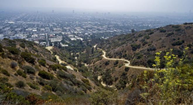 runyon-canyon-43