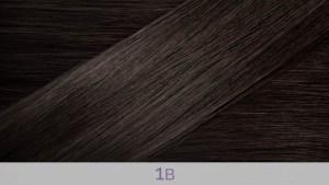 Hair Colour 1B