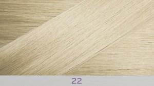 Hair Colour 22