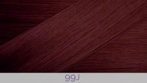 Hair Colour 99J