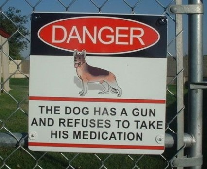 dog-has-a-gun-refuses-to-take-medication-danger-sign