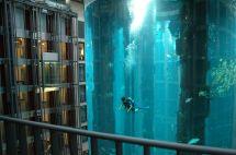 Aqua Dom Huge Aquarium In Sea Life Radisson Blu Hotel