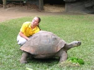 World\'s Oldest Tortoise Harriett Australia Zoo