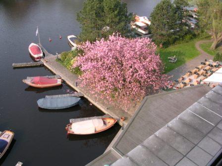 Hilton Amsterdam canal view