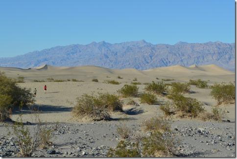 DVNP sand dunes