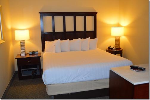 Hyatt King Bed