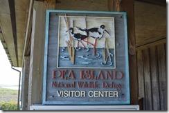 Pea Island NWR